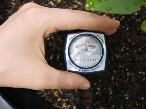 Máy đo Ph và độ ẩm đất DM-15